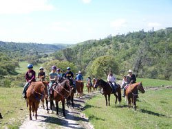 Youth Horseback Riding - Western Pleasure